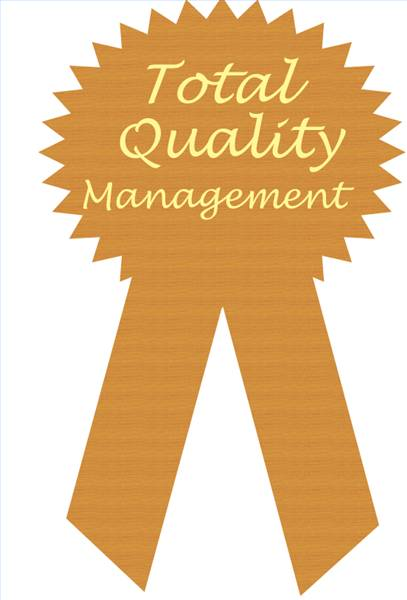 total quality managment Definition of total quality management : strategy, culture and management style  of a company according to which all persons in the same study, practice,.